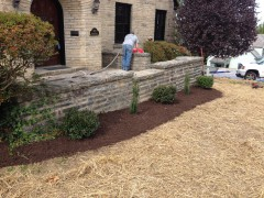 Mulch and Shrubs from Affordable Landscaping Supplies