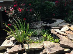 Ponds and Water Features from Affordable Landscaping Supplies